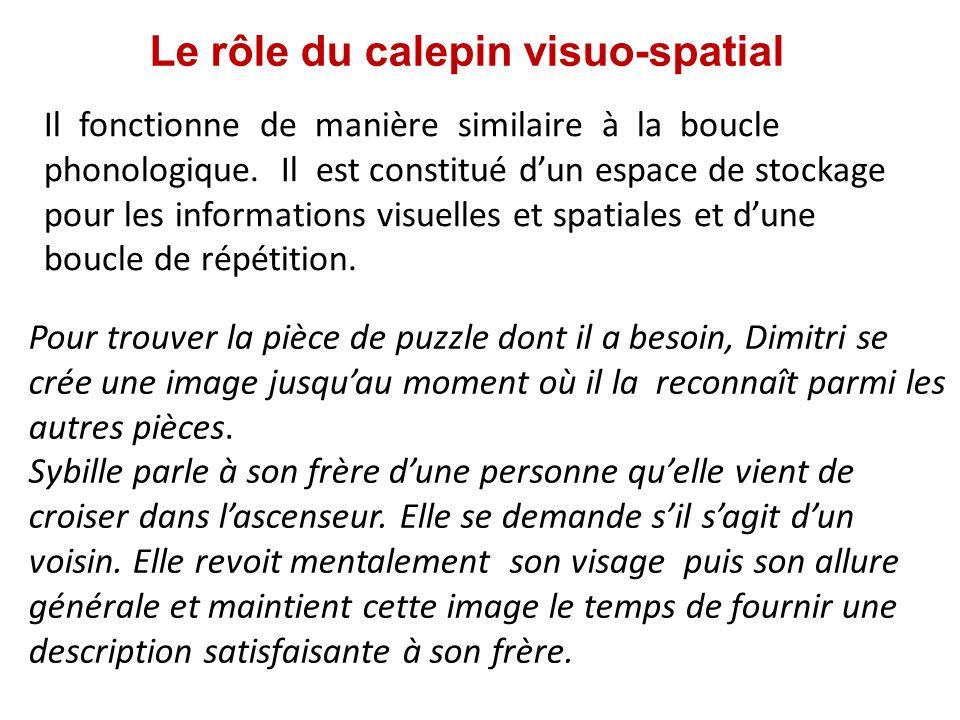 Le rôle du calepin visuo-spatial Il fonctionne de manière similaire à la boucle phonologique. Il est constitué dun espace de stockage pour les informa