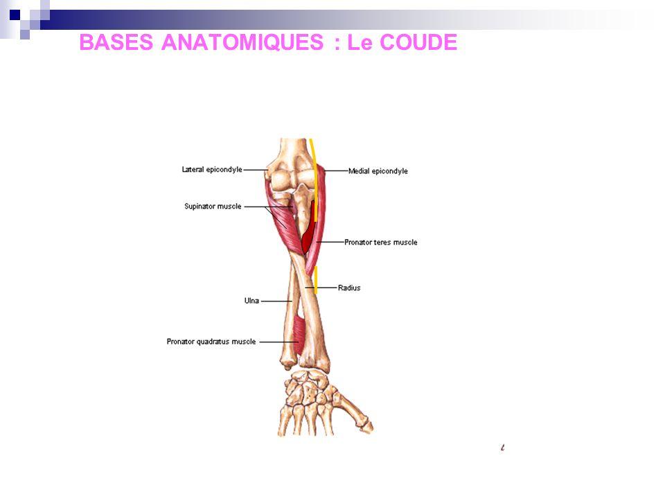 Douleur du coude : examen clinique Déviation en varus/valgus Epanchement synovial Hygroma Mobilités normales : - extension 0° (recurvatum de 5 à10 %,