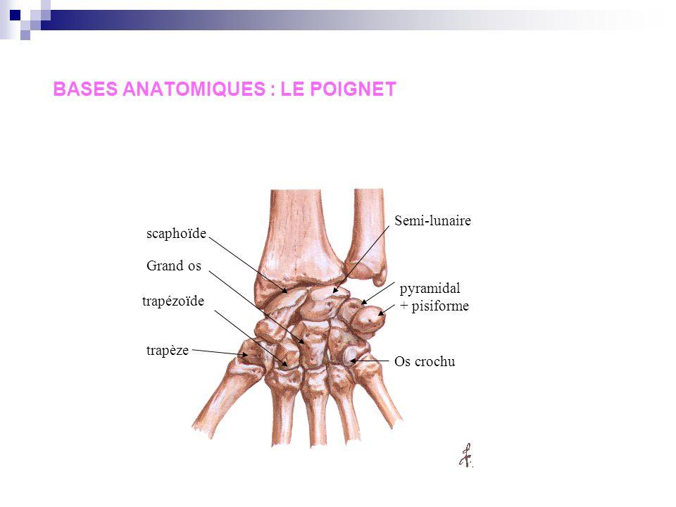 SEMIOLOGIE DE LAPPAREIL LOCOMOTEUR Examen de la main et du poignet