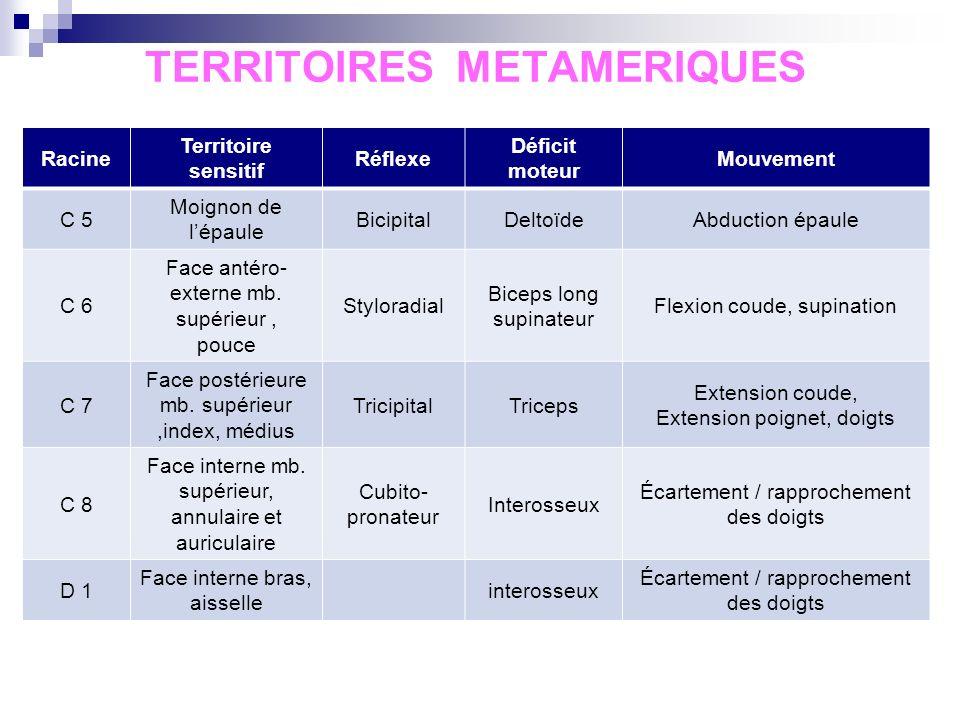 Pathologies vertébrales communes : Sans irradiation :on parle de torticoli si 5 jours JAMAIS dostéoporose au rachis cervical : tout tassement est mali