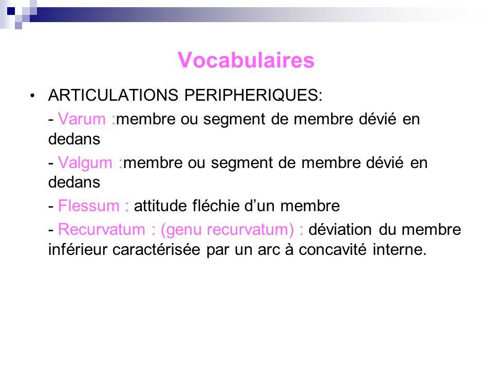 Les articulations périphériques : Le membre inférieur