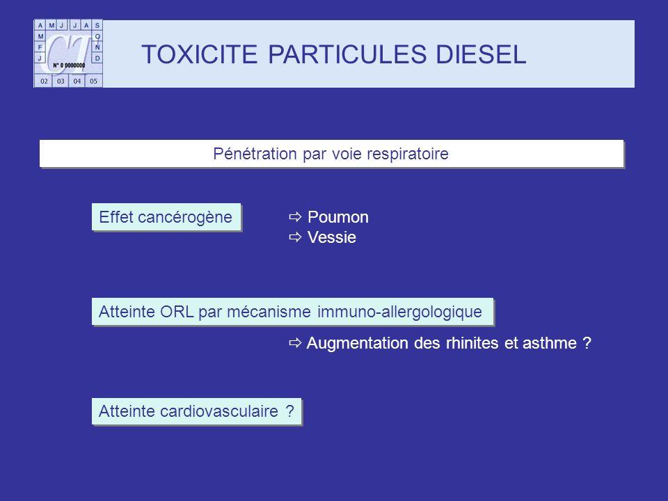 Effet cancérogène Pénétration par voie respiratoire TOXICITE PARTICULES DIESEL Atteinte ORL par mécanisme immuno-allergologique Atteinte cardiovascula