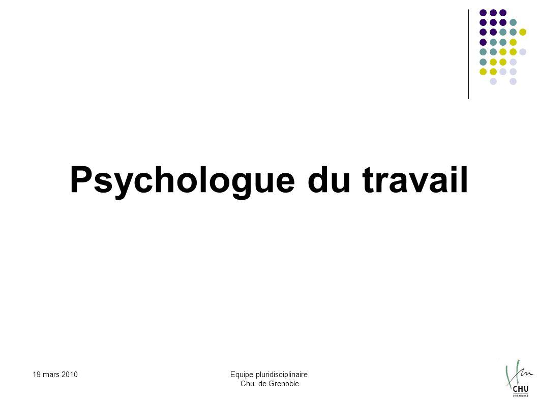 19 mars 2010Equipe pluridisciplinaire Chu de Grenoble Psychologue du travail