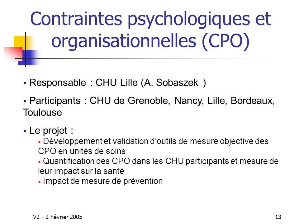 V2 - 2 Février 200513 Contraintes psychologiques et organisationnelles (CPO) Responsable : CHU Lille (A.
