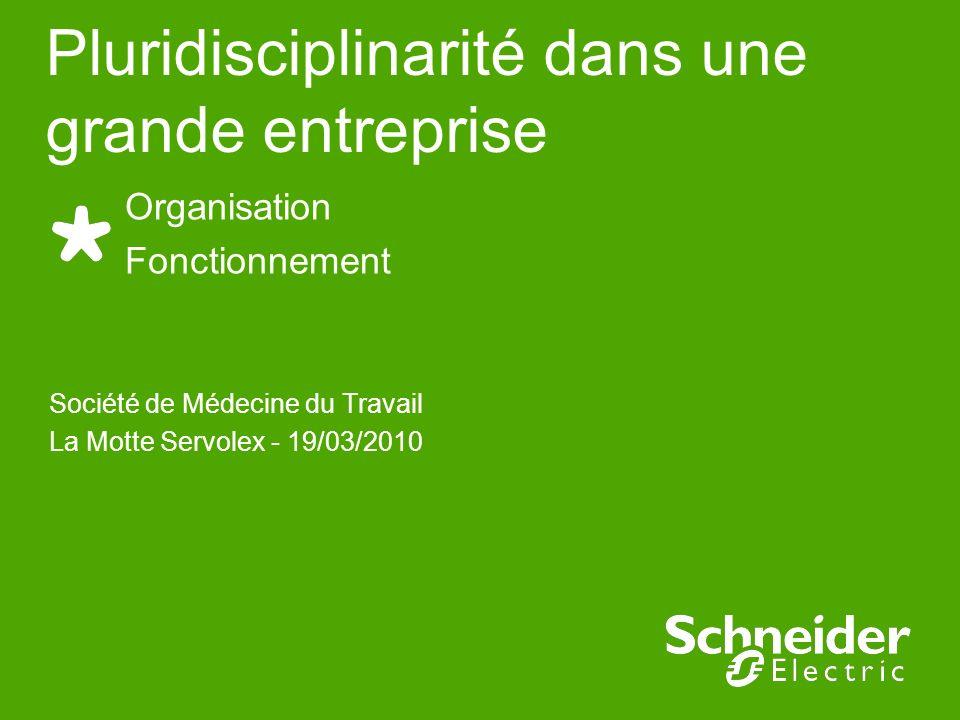 Société de Médecine du Travail La Motte Servolex - 19/03/2010 Organisation Fonctionnement Pluridisciplinarité dans une grande entreprise