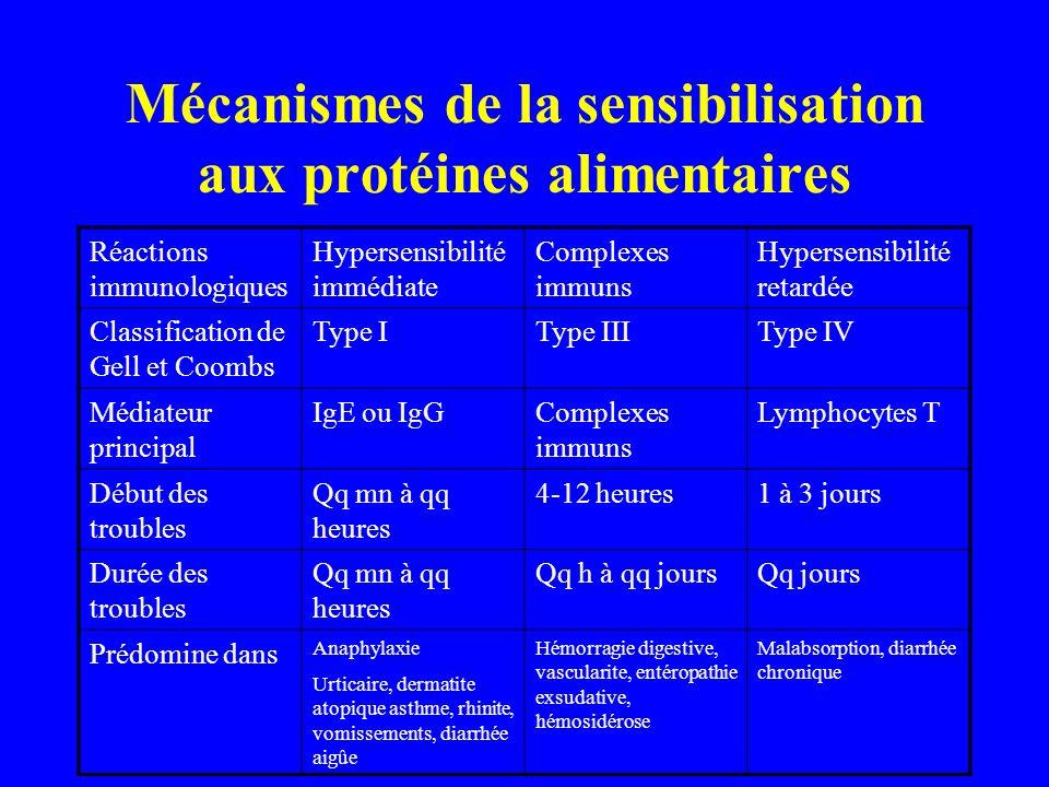 Mécanismes de la sensibilisation aux protéines alimentaires Réactions immunologiques Hypersensibilité immédiate Complexes immuns Hypersensibilité reta