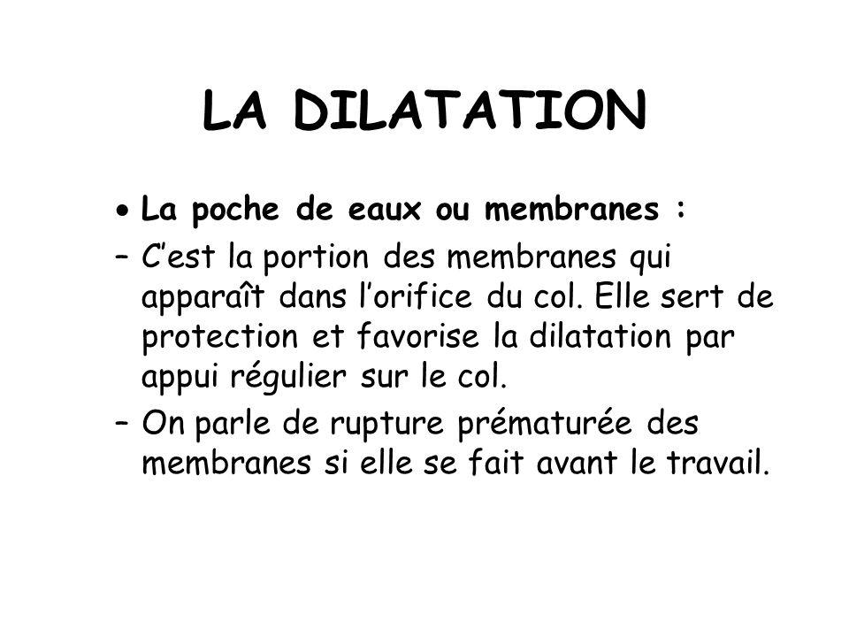 LA DILATATION La poche de eaux ou membranes : –Cest la portion des membranes qui apparaît dans lorifice du col.