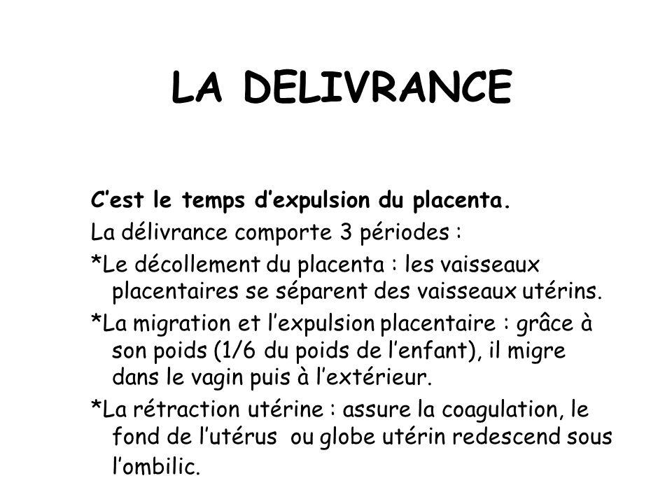 LA DELIVRANCE Cest le temps dexpulsion du placenta.