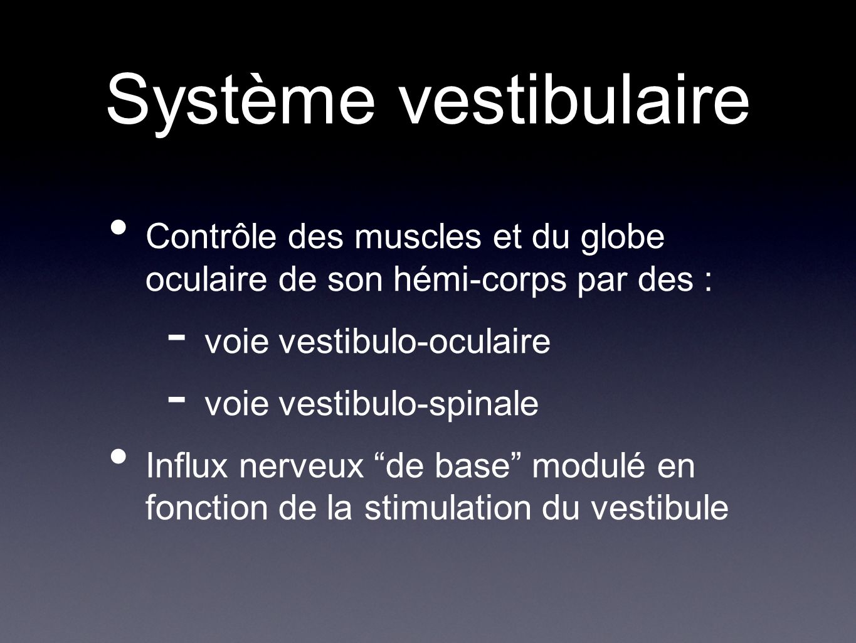 Syndrome vestibulaire = ensemble des signes accompagnant une atteinte du système vestibulaire - vertige - hypotonie de lhémi-corps du côté atteint - nystagmus à ressort