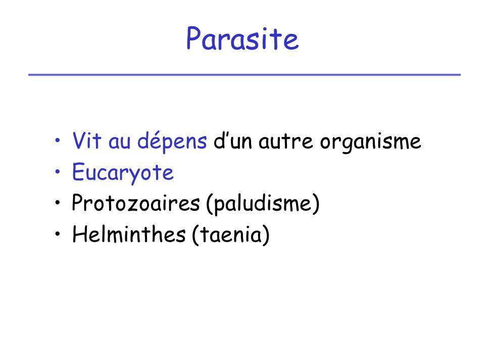 II – Modes de reproduction des différents micro-organismes