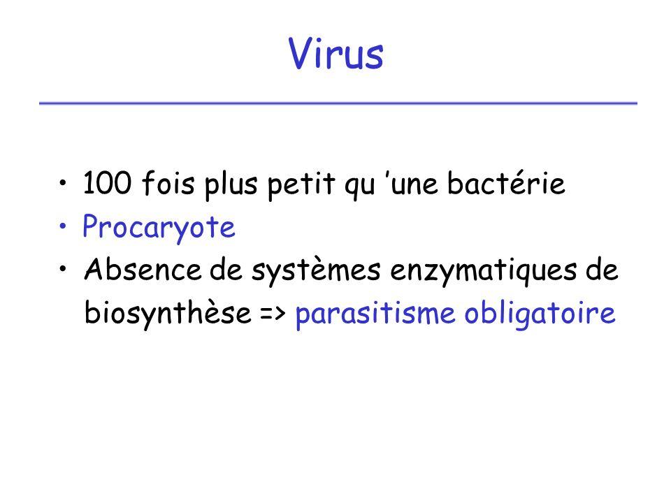 Virus 100 fois plus petit qu une bactérie Procaryote Absence de systèmes enzymatiques de biosynthèse => parasitisme obligatoire