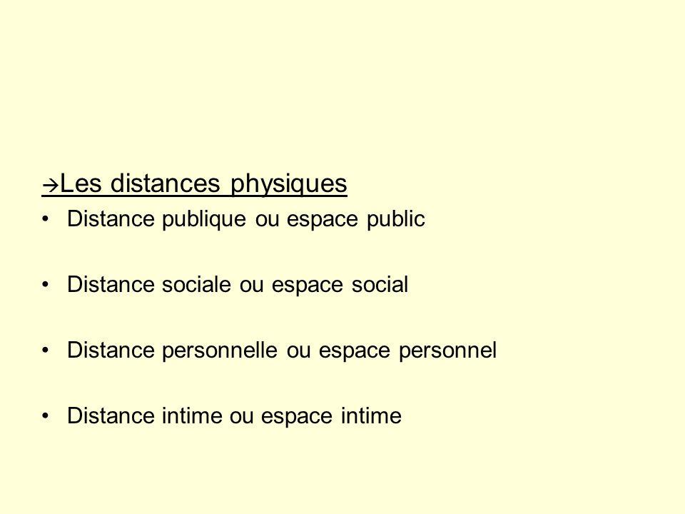 CONCLUSION Les distances physiques jouent un rôle fondamental dans le contrôle du contenu et de la qualité des échanges entre lIDE et le patient.