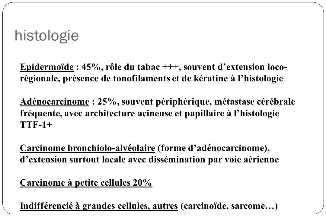 histologie Epidermoïde : 45%, rôle du tabac +++, souvent dextension loco- régionale, présence de tonofilaments et de kératine à lhistologie Adénocarci