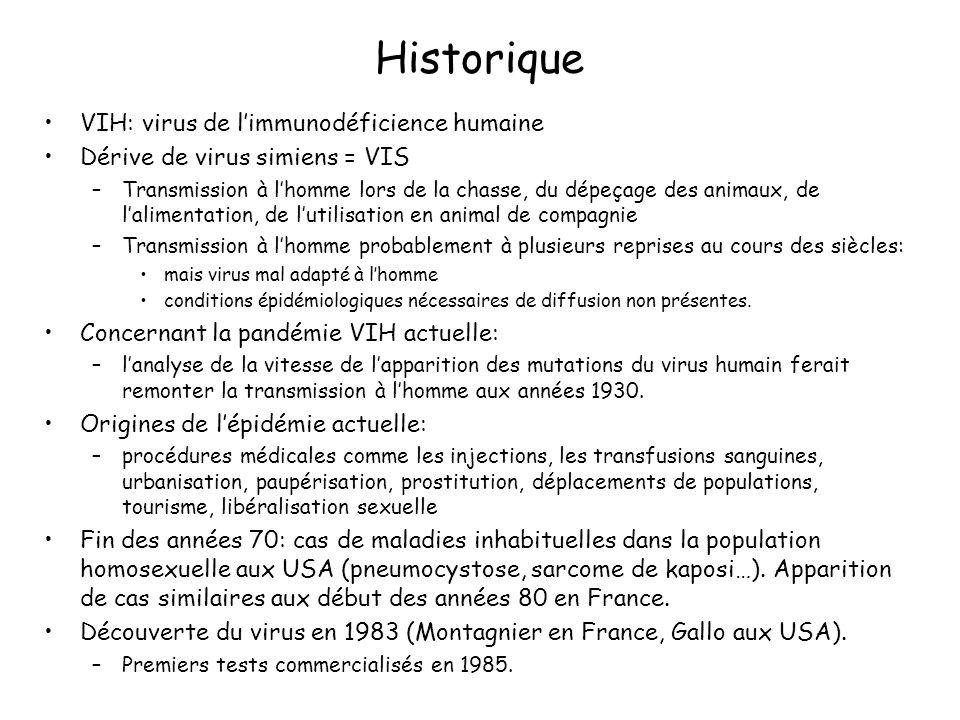 Historique VIH: virus de limmunodéficience humaine Dérive de virus simiens = VIS –Transmission à lhomme lors de la chasse, du dépeçage des animaux, de