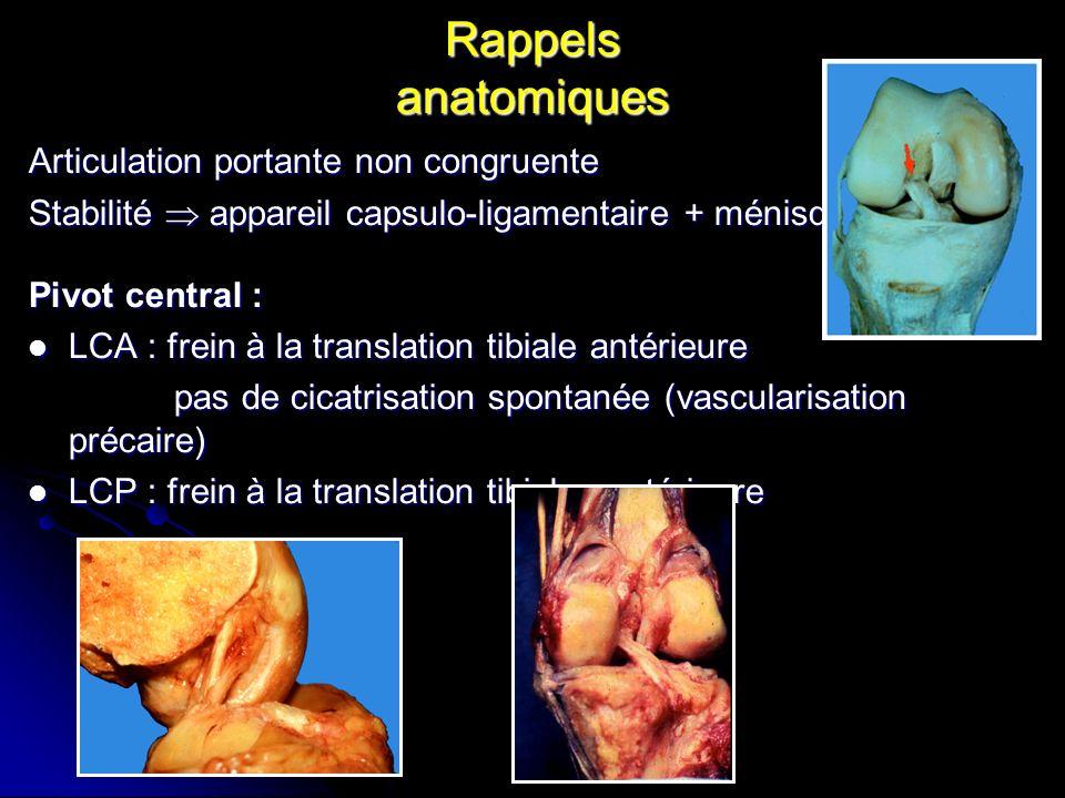 Rappels anatomiques Articulation portante non congruente Stabilité appareil capsulo-ligamentaire + ménisque Pivot central : LCA : frein à la translati