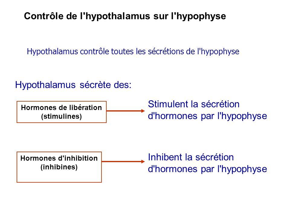 Contrôle de l'hypothalamus sur l'hypophyse Hypothalamus contrôle toutes les sécrétions de l'hypophyse Hypothalamus sécrète des: Hormones de libération