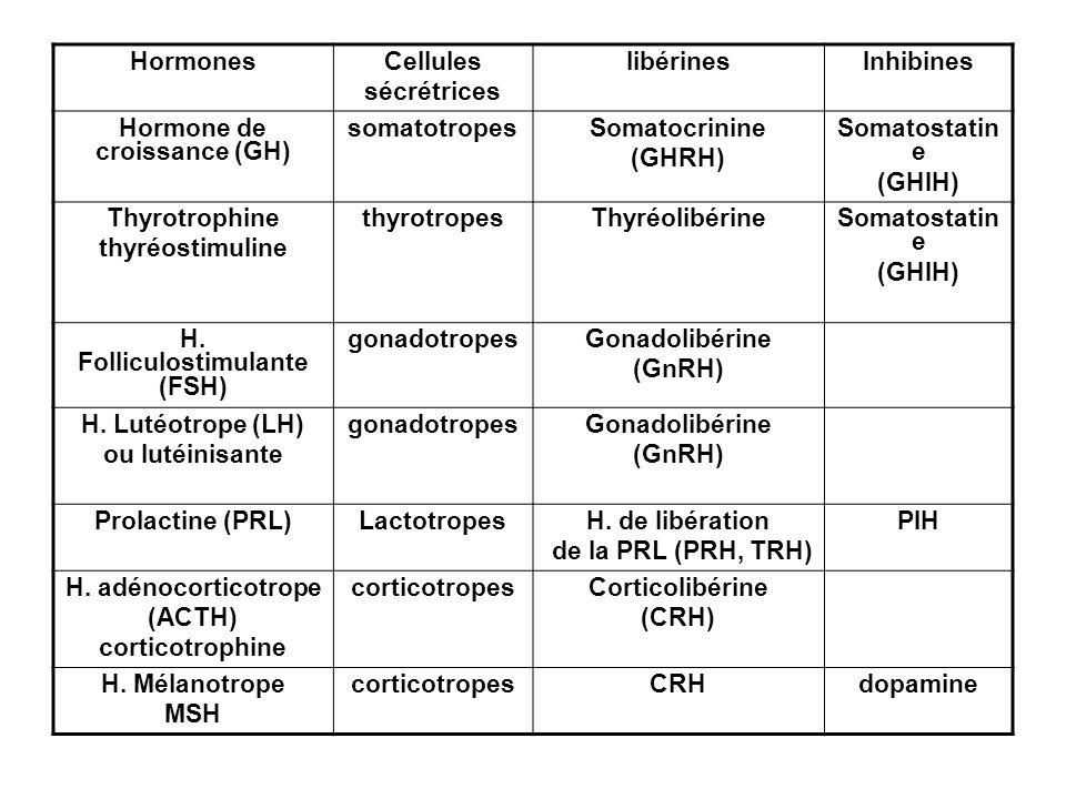 HormonesCellules sécrétrices libérinesInhibines Hormone de croissance (GH) somatotropesSomatocrinine (GHRH) Somatostatin e (GHIH) Thyrotrophine thyréo