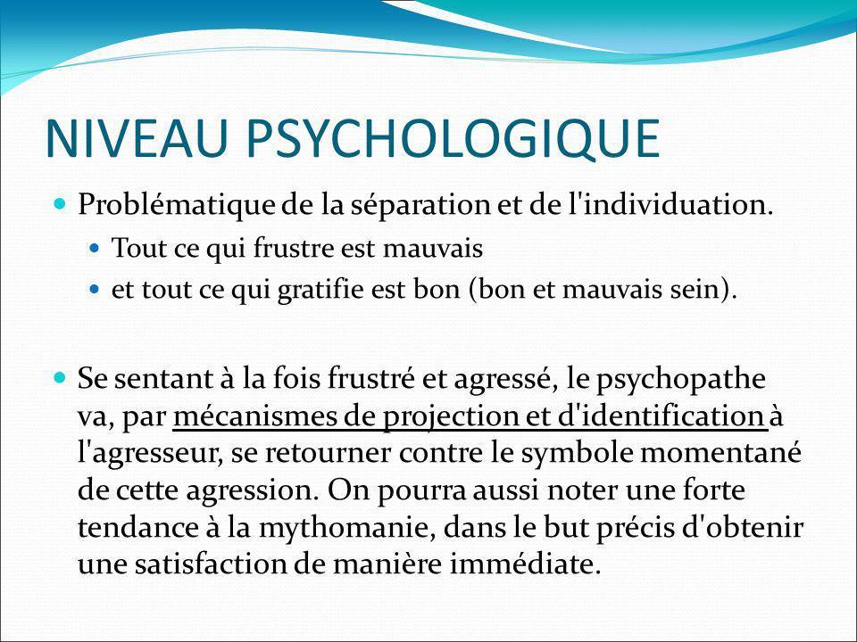 NIVEAU PSYCHOLOGIQUE Problématique de la séparation et de l'individuation. Tout ce qui frustre est mauvais et tout ce qui gratifie est bon (bon et mau