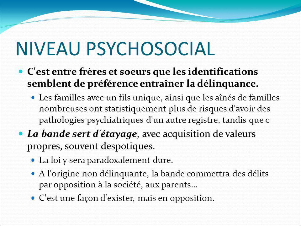 NIVEAU PSYCHOSOCIAL C'est entre frères et soeurs que les identifications semblent de préférence entraîner la délinquance. Les familles avec un fils un