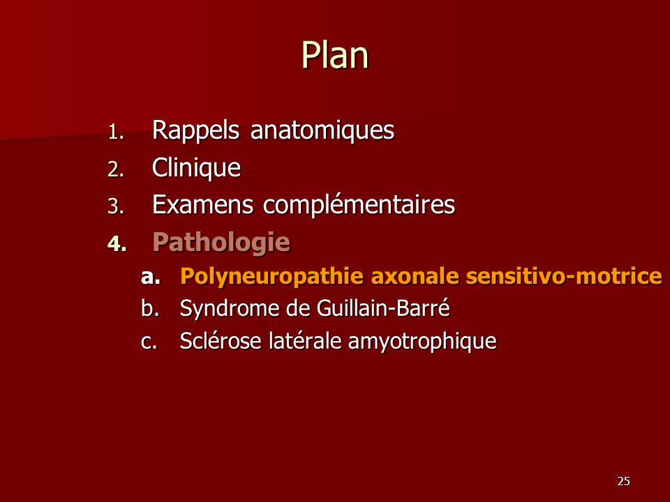 25 Plan 1. Rappels anatomiques 2. Clinique 3. Examens complémentaires 4. Pathologie a.Polyneuropathie axonale sensitivo-motrice b.Syndrome de Guillain
