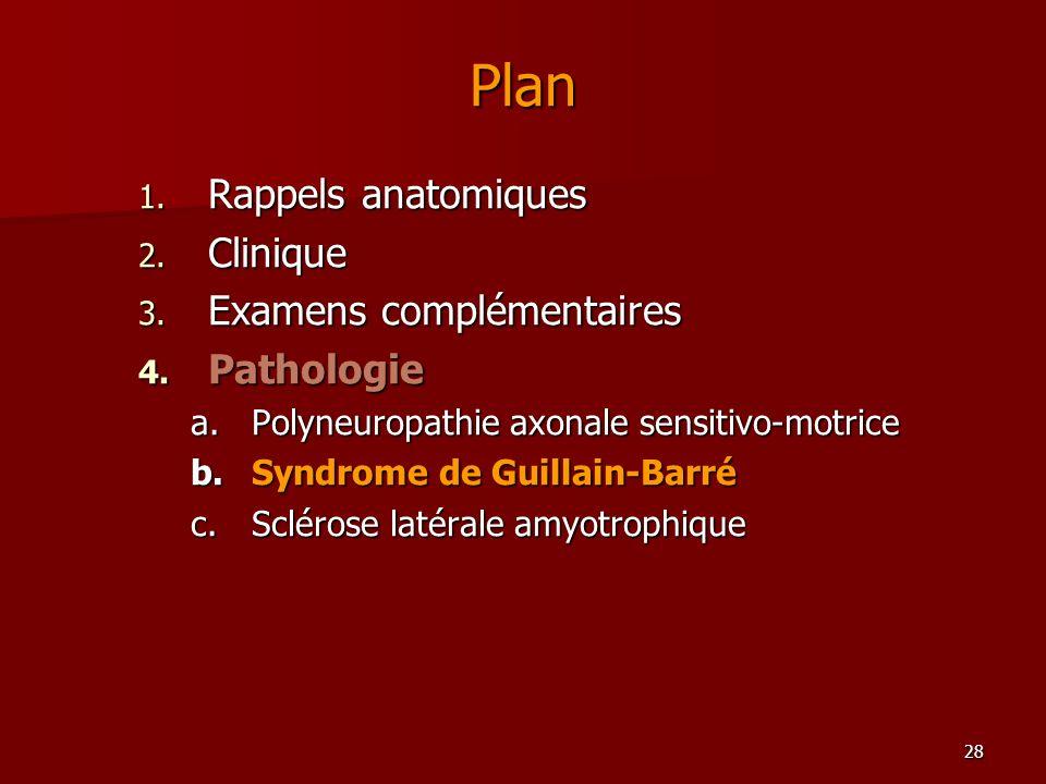 28 Plan 1. Rappels anatomiques 2. Clinique 3. Examens complémentaires 4. Pathologie a.Polyneuropathie axonale sensitivo-motrice b.Syndrome de Guillain