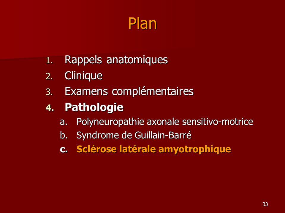 33 Plan 1. Rappels anatomiques 2. Clinique 3. Examens complémentaires 4. Pathologie a.Polyneuropathie axonale sensitivo-motrice b.Syndrome de Guillain