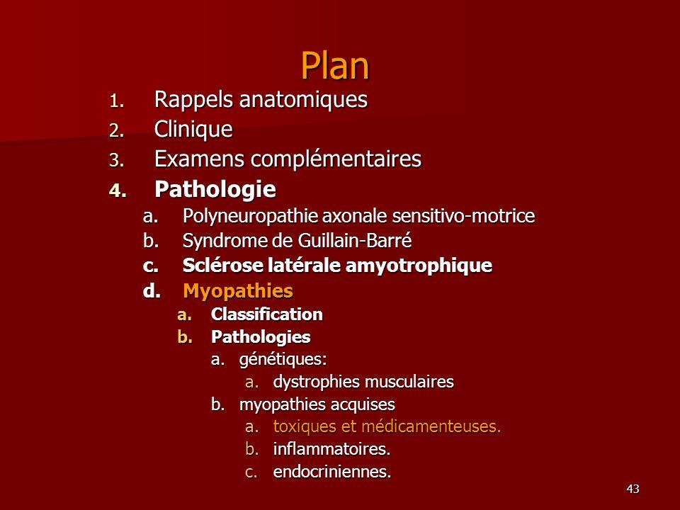 43 Plan 1. Rappels anatomiques 2. Clinique 3. Examens complémentaires 4. Pathologie a.Polyneuropathie axonale sensitivo-motrice b.Syndrome de Guillain