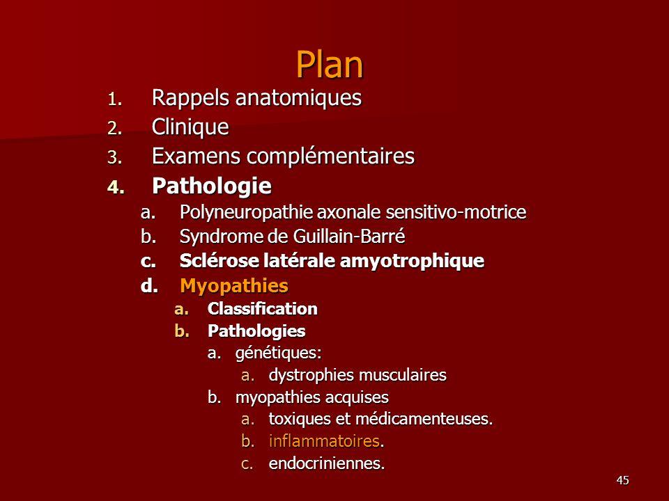 45 Plan 1. Rappels anatomiques 2. Clinique 3. Examens complémentaires 4. Pathologie a.Polyneuropathie axonale sensitivo-motrice b.Syndrome de Guillain