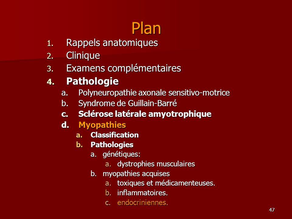 47 Plan 1. Rappels anatomiques 2. Clinique 3. Examens complémentaires 4. Pathologie a.Polyneuropathie axonale sensitivo-motrice b.Syndrome de Guillain