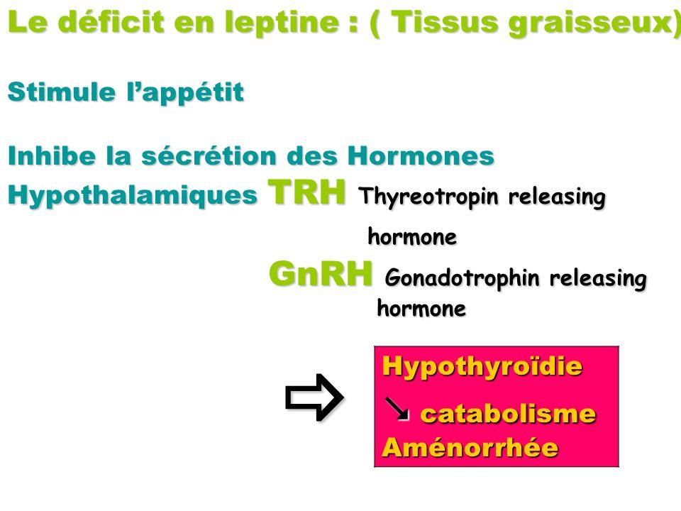Le déficit en leptine : ( Tissus graisseux) Stimule lappétit Inhibe la sécrétion des Hormones Hypothalamiques TRH Thyreotropin releasing hormone GnRH
