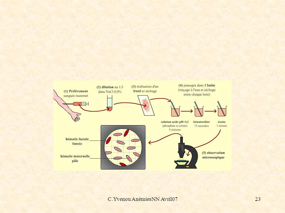 C.Yvenou AnémiesNN Avril0723
