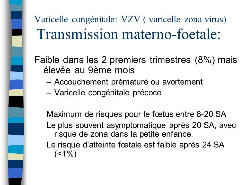 Varicelle congénitale: VZV ( varicelle zona virus) Transmission materno-foetale: Faible dans les 2 premiers trimestres (8%) mais élevée au 9ème mois –