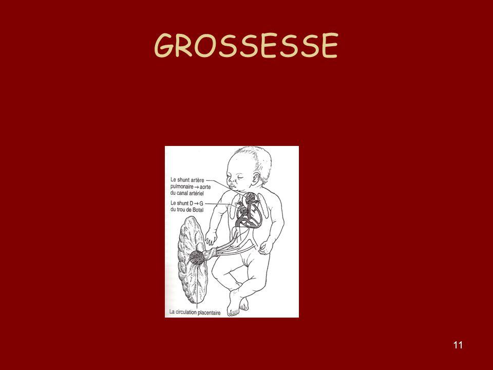 11 GROSSESSE
