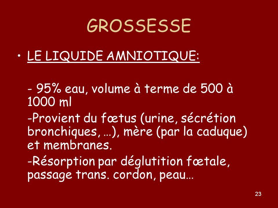 23 GROSSESSE LE LIQUIDE AMNIOTIQUE: - 95% eau, volume à terme de 500 à 1000 ml -Provient du fœtus (urine, sécrétion bronchiques, …), mère (par la cadu