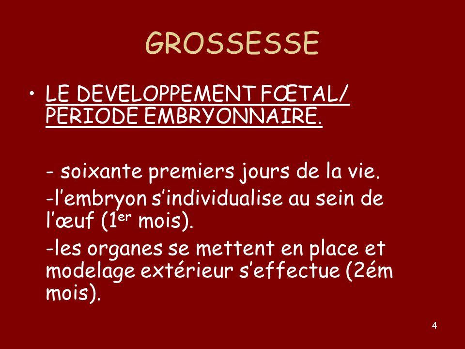 4 LE DEVELOPPEMENT FŒTAL/ PERIODE EMBRYONNAIRE. - soixante premiers jours de la vie. -lembryon sindividualise au sein de lœuf (1 er mois). -les organe