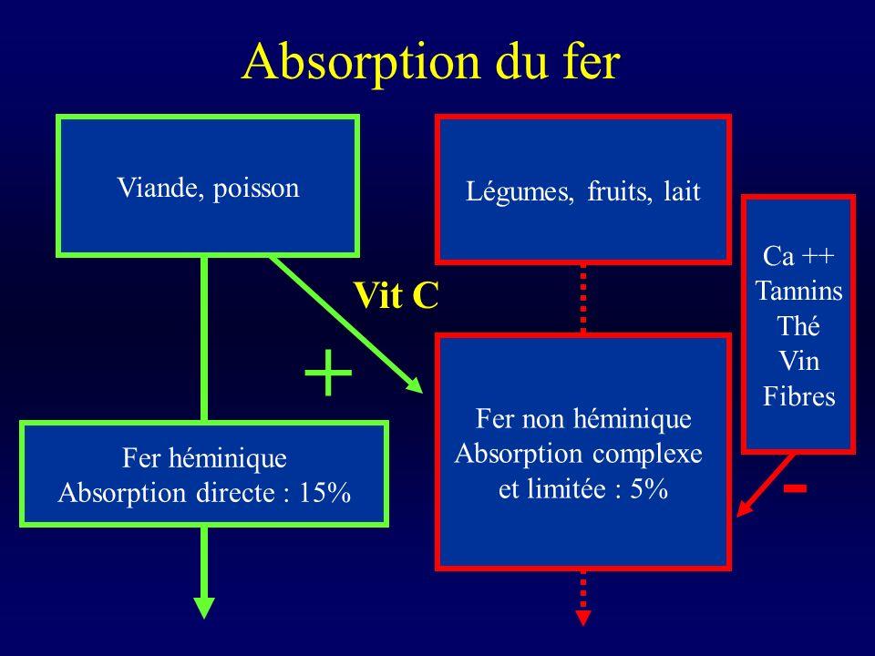 Absorption du fer Viande, poisson Légumes, fruits, lait Fer héminique Absorption directe : 15% Fer non héminique Absorption complexe et limitée : 5% V