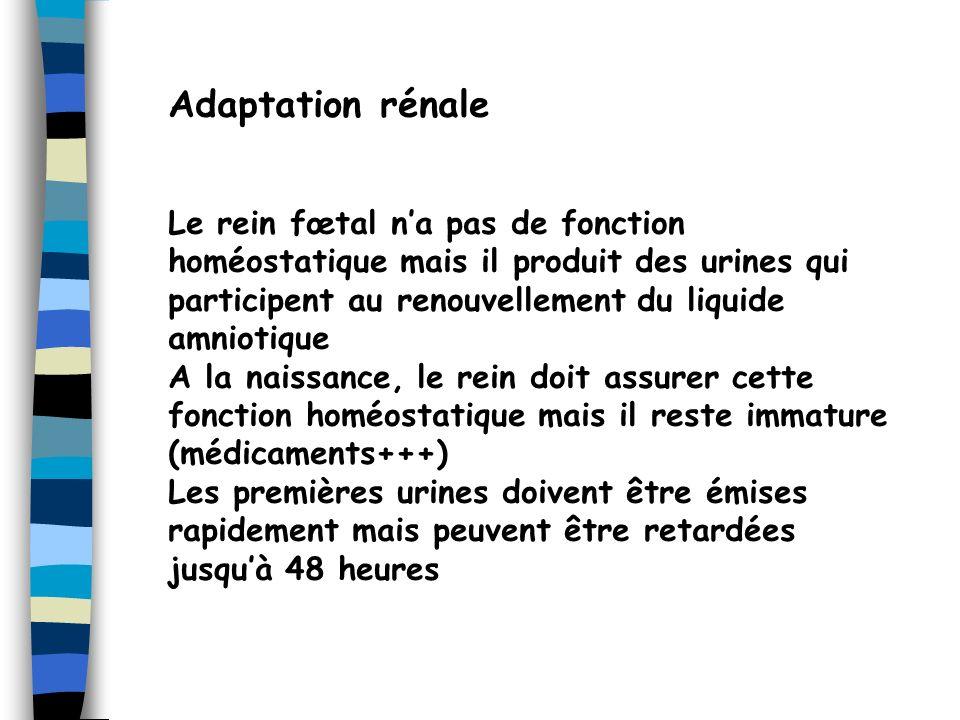 Adaptation thermique Le nouveau-né na pas de thermorégulation efficace => précautions +++ Trop chaud = trop froid = danger!.
