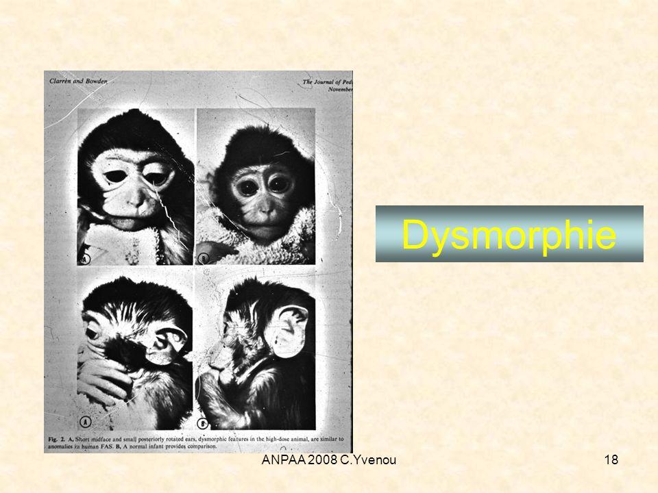 ANPAA 2008 C.Yvenou18 Dysmorphie