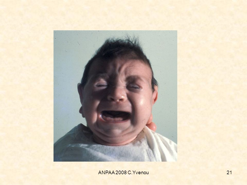 ANPAA 2008 C.Yvenou21