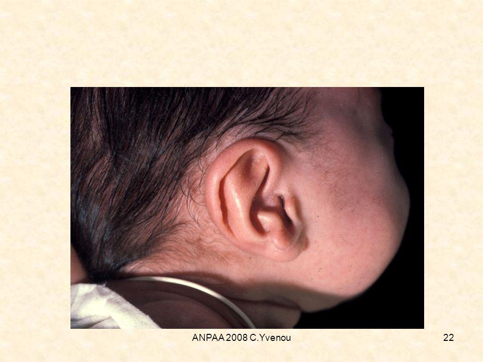 ANPAA 2008 C.Yvenou22