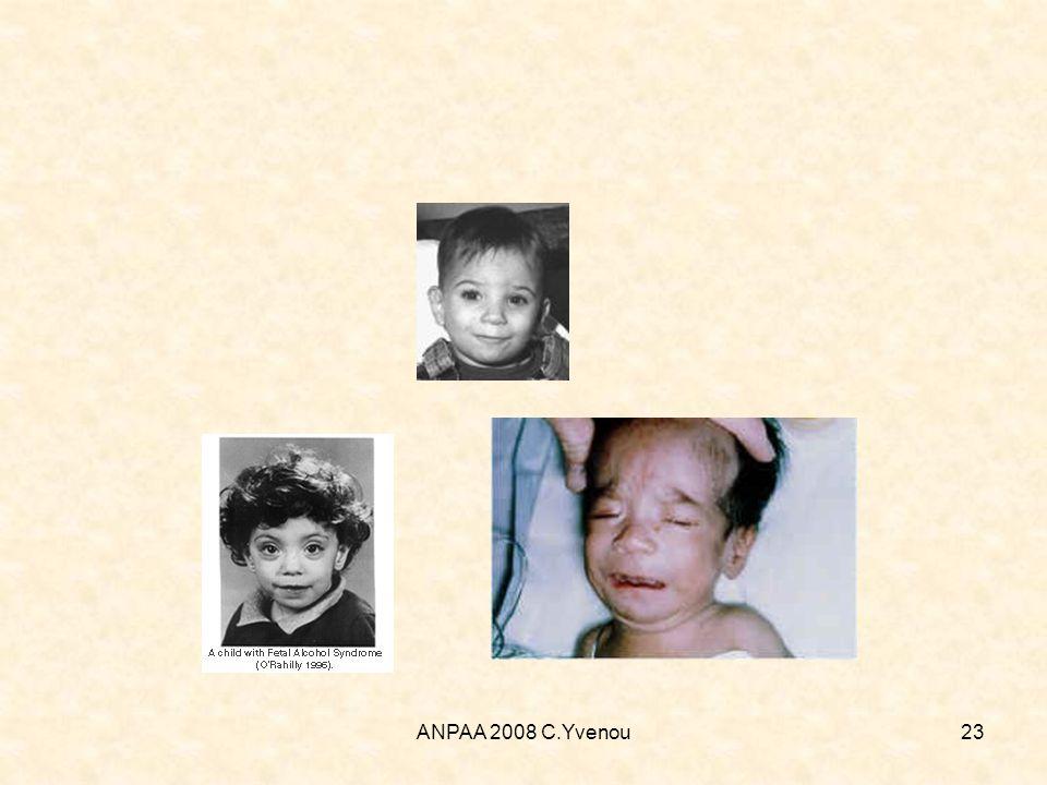 ANPAA 2008 C.Yvenou23