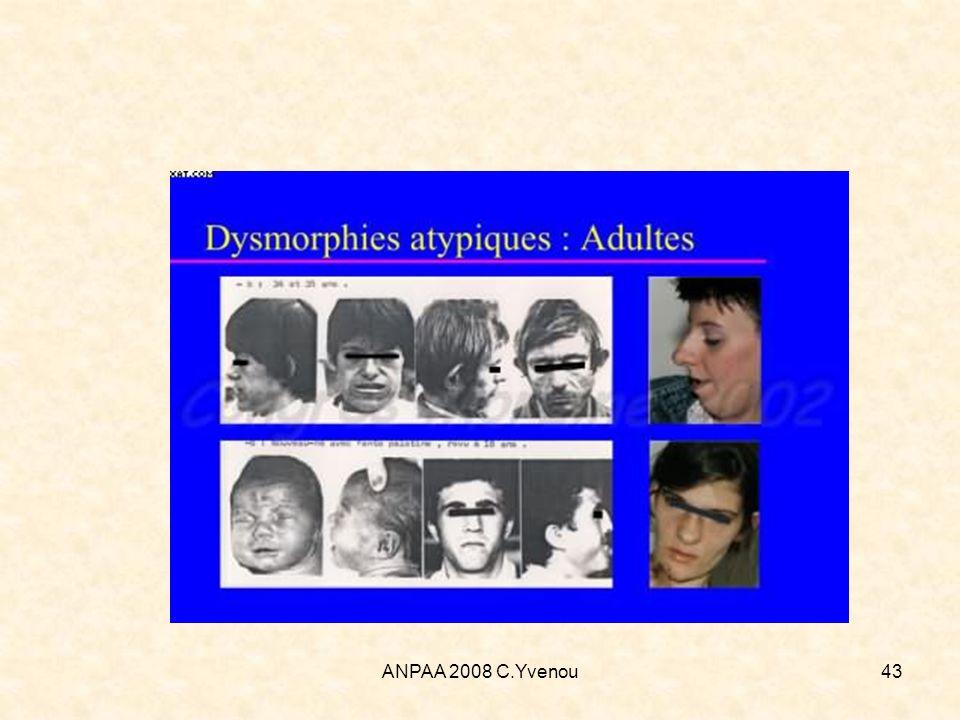 ANPAA 2008 C.Yvenou43