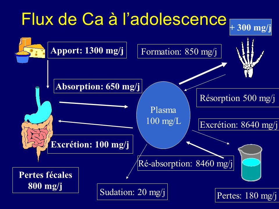 Flux de Ca à ladolescence Apport: 1300 mg/j Pertes fécales 800 mg/j Absorption: 650 mg/j Excrétion: 100 mg/j Plasma 100 mg/L Formation: 850 mg/j Résor