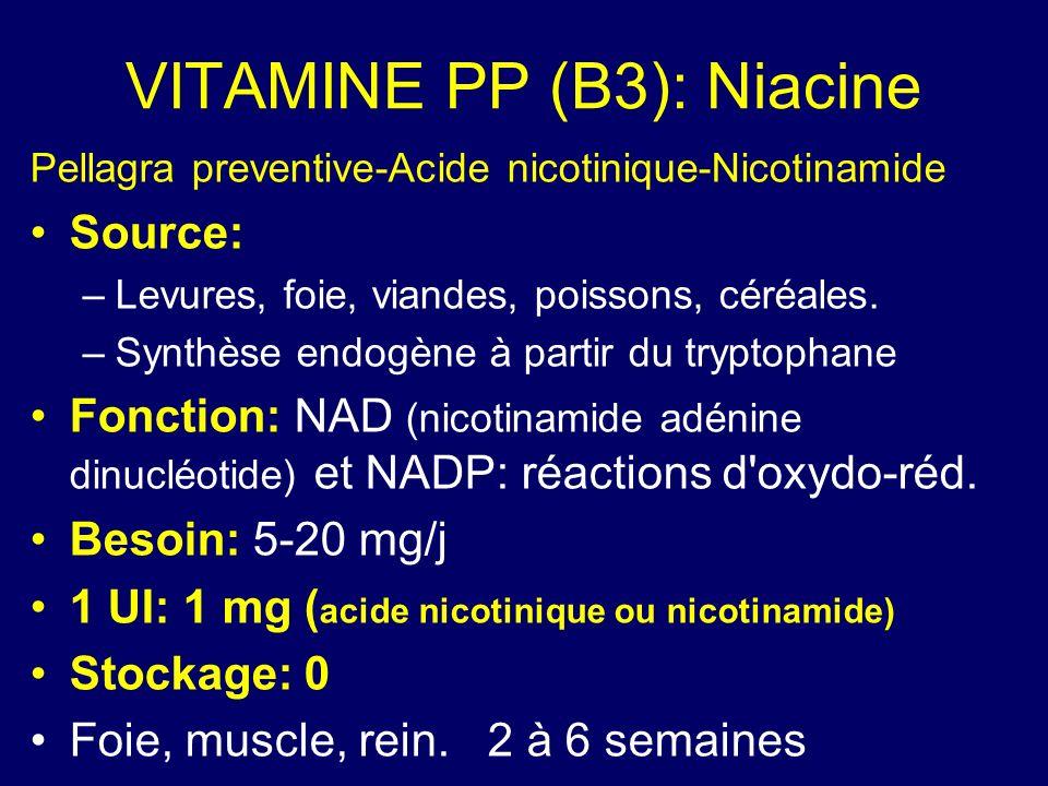 VITAMINE PP (B3): Niacine Pellagra preventive-Acide nicotinique-Nicotinamide Source: –Levures, foie, viandes, poissons, céréales. –Synthèse endogène à