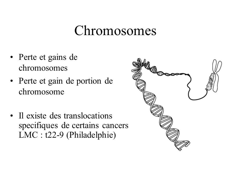 Chromosomes Perte et gains de chromosomes Perte et gain de portion de chromosome Il existe des translocations specifiques de certains cancers LMC : t22-9 (Philadelphie)