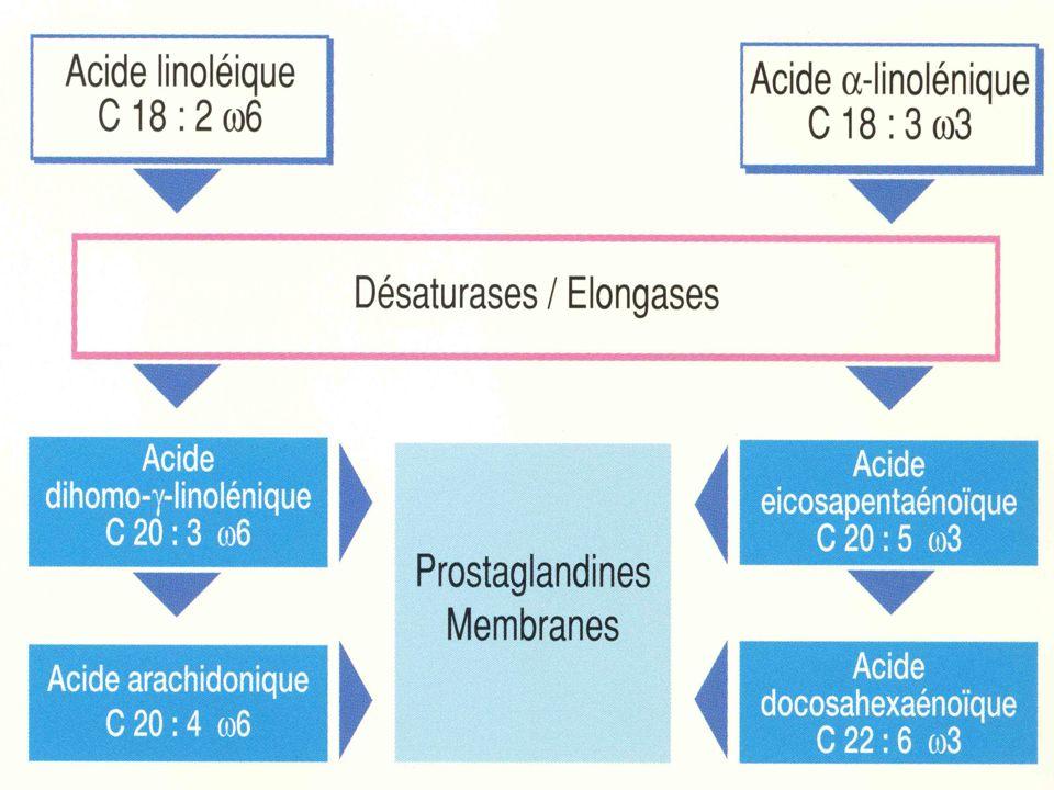 Développement de la motricité (1): Succion - Déglutition Temps buccal: Succion réflexe: - Mvt propulsif de la langue en arrière - Maturation au cours des premiers jours Temps pharyngé: réflexe: - Contraction du pharynx, relaxation du SSO.