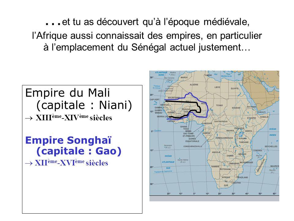 … et tu as découvert quà lépoque médiévale, lAfrique aussi connaissait des empires, en particulier à lemplacement du Sénégal actuel justement… Empire