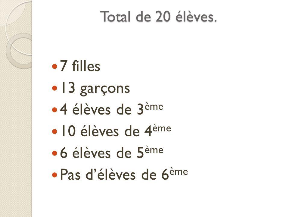 Total de 20 élèves. 7 filles 13 garçons 4 élèves de 3 ème 10 élèves de 4 ème 6 élèves de 5 ème Pas délèves de 6 ème