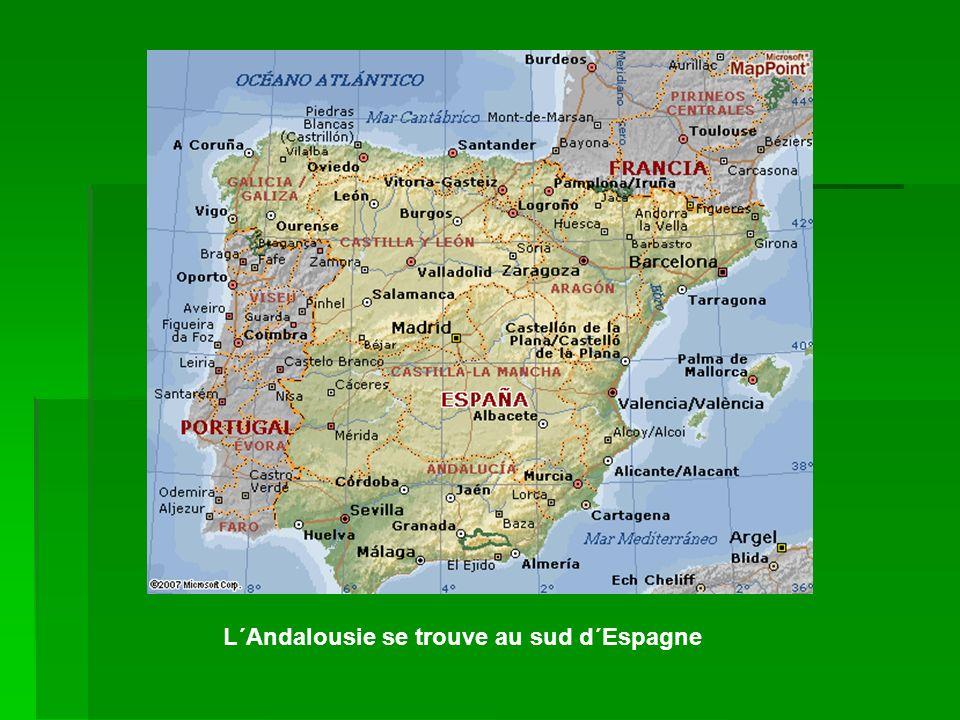 Cordoue est au nord de l´Andalousie, a coté de Seville, Malaga et Jaen.