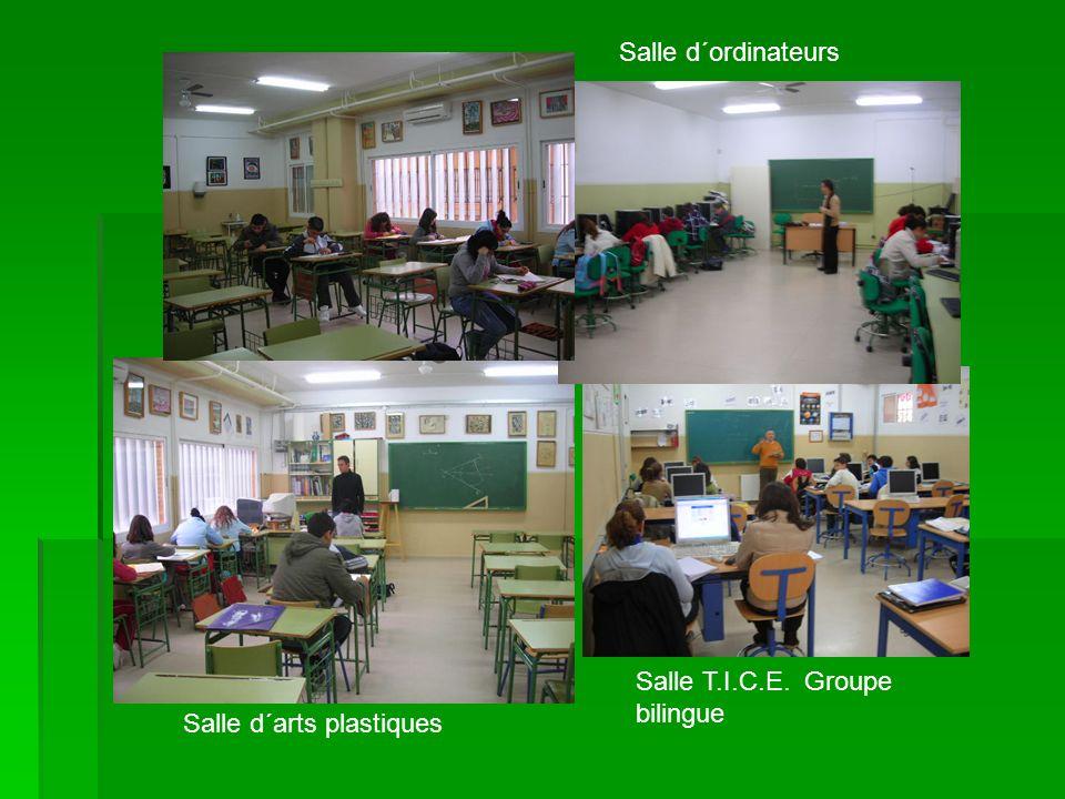 Salle d´ordinateurs Salle T.I.C.E. Groupe bilingue Salle d´arts plastiques